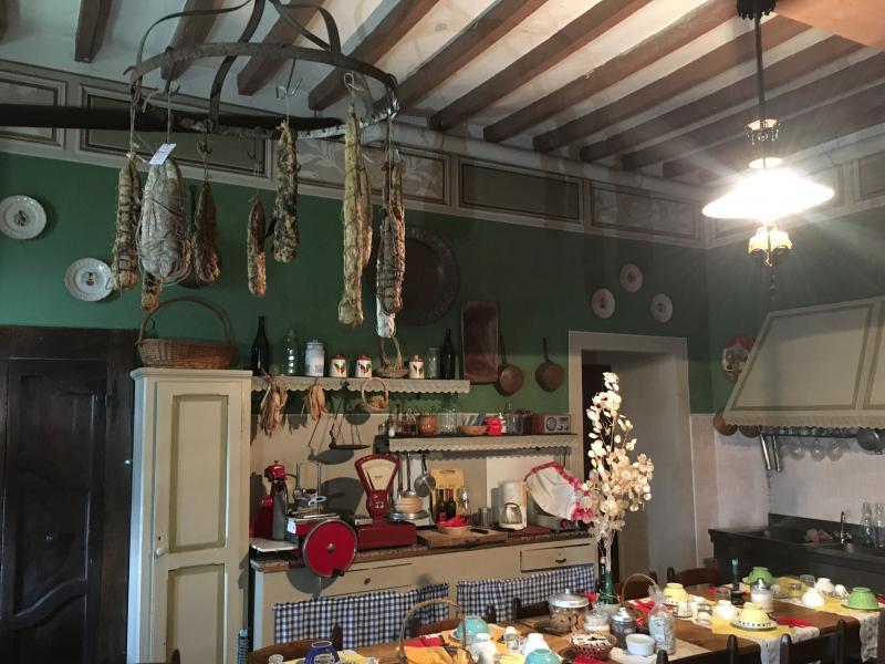 Visita guidata al Museo archeologico di Pianello e alla Rocca d'Olgisio