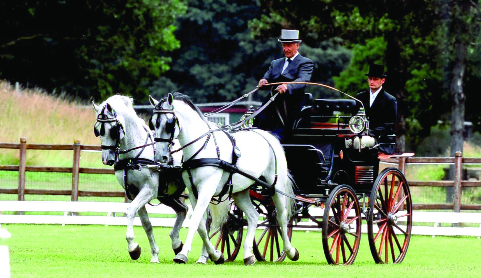 carrozza-Bianchi-con-cavalli